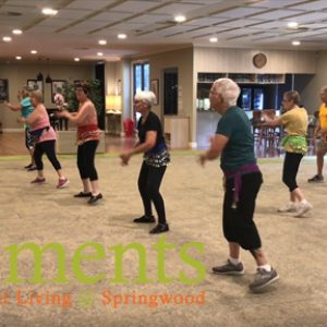 OUR WEEKLY ZUMBA GOLD SESSION